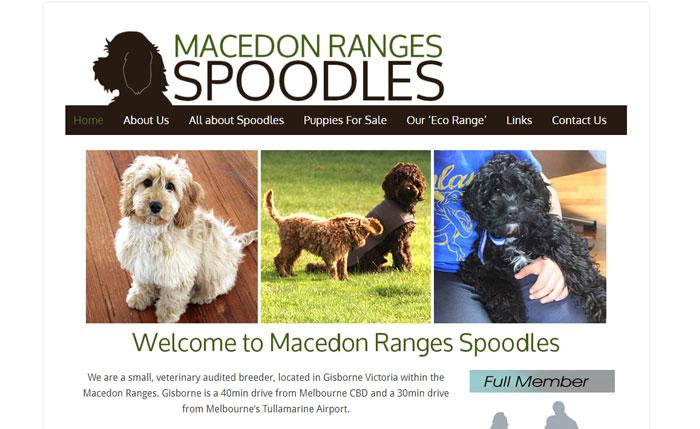 Spoodles website